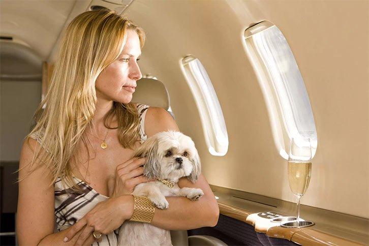 Mujer viajando con perro en avión